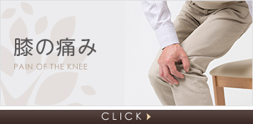 膝の痛み Pain of the knee CLICK